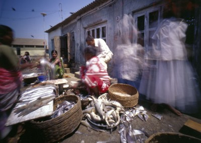 pinhole-alibaug-fish-market-india